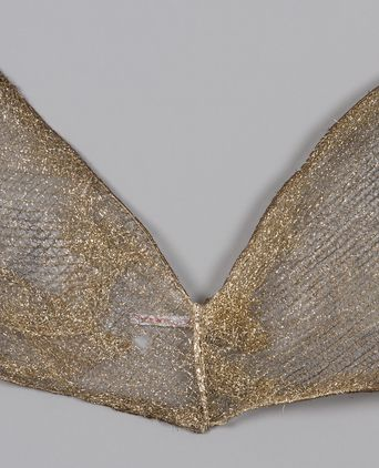 Mesh and Wire Wings