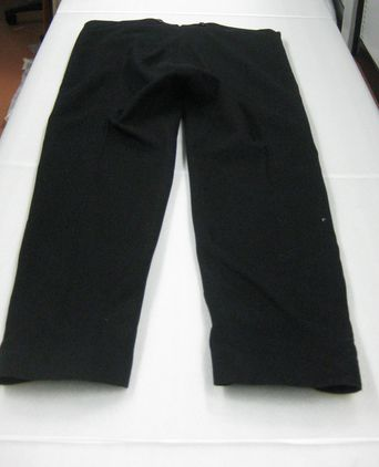 Privy Council Uniform - back of trousers [taken 9-11-09]